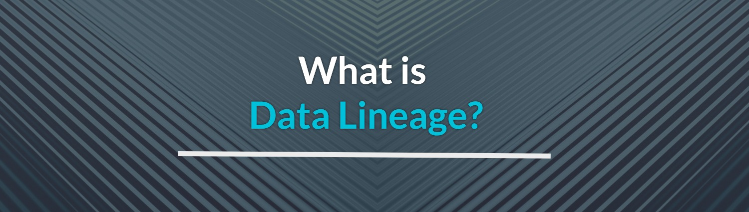 what is data lineage