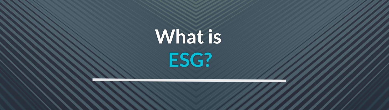 what is microsoft esg